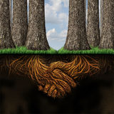 Team Agreement. Business partners concept as two groups of trees coming together in friendship and cooperation for mutual growth success as deep underground vector illustration