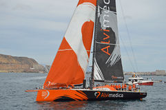 Team Alvimedica Volvo Ocean Race Arkivbild