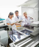 Team Analyzing Samples In Laboratory Royalty Free Stock Photo