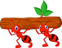 Team of ants cartoon carries log Stock Photos