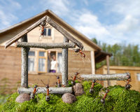 Team of ants constructing house, teamwork. Woman greetings team of ants constructing house, ant tales Royalty Free Stock Image