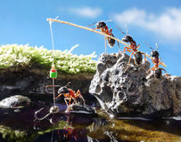 Team of ants fishing with rod, teamwork Royalty Free Stock Photo