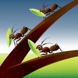 Team-Arbeit 04 Stockfoto