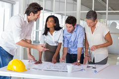 Team of architects going over blueprints Royalty Free Stock Image