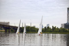 Team athletes participating in the sailing competition Stock Image