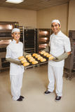 Team of bakers holding rack of rolls Royalty Free Stock Photography