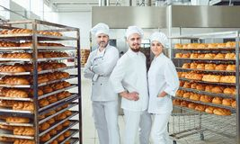 A team of bakers smiles at the bakery. Baking bread in the bakery. Three bakers in white uniforms stand against the shelves of bread royalty free stock photos