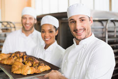 Team of bakers smiling at camera with trays of croissants Stock Photos