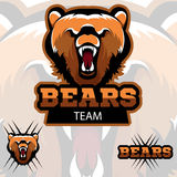 Team bears mascot logo. Modern sport logotype. A modern sports logo. Talisman of the team bears. Three options Royalty Free Stock Images