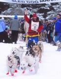 Team 17 beginnt das Rennen im John Beargrease-Hundeschlittenmarathon Lizenzfreie Stockbilder