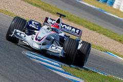 Team BMW-Sauber F1, Robert Kubica, 2006 stockfotos