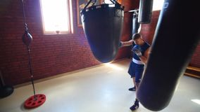 Team of boxers from Ukraine. The future of Ukrainian boxing. Training of boxers. stock video footage