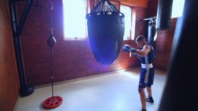 Team of boxers from Ukraine. The future of Ukrainian boxing. Training of boxers. stock footage