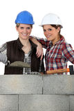 Team of bricklayers. Portrait of a team of bricklayers Royalty Free Stock Image