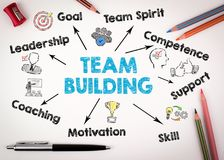 Team building Concept. Chart with keywords and icons on white background.  Stock Photography
