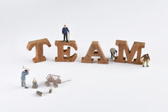 Team building idea. And business concept, word of wooden team with miniature worker on white background Royalty Free Stock Image