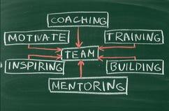 Team. Building mentoring mentor training coach business Stock Photo