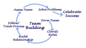 Team Building Process. Components of Team Building Process royalty free illustration