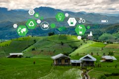 Free Team Business Energy Use, Sustainability Elements Energy Sources Sustainable Stock Image - 156531111