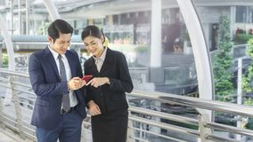Team of business people smart man and woman talk Stock Images
