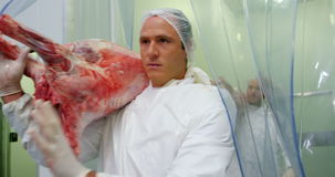 Team of butchers carrying meat stock footage