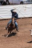 Team Cattle Roper die naar de hoornen streven Royalty-vrije Stock Foto