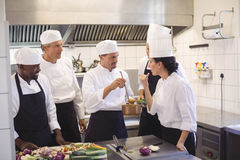 Team of chef tasting food in the commercial kitchen Royalty Free Stock Photos