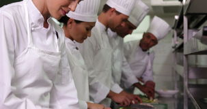 Team of chefs chopping vegetables stock video footage