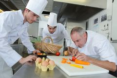 Team chefs chopping vegetables in kitchen Stock Image