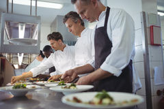 Team of chefs garnishing meal on counter Stock Photos