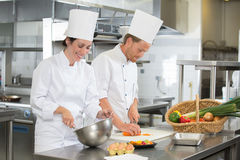 Team chefs working in kitchen. Team of chefs working in the kitchen Royalty Free Stock Images