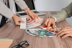 Team of designers working with color palettes at office table royalty free stock image