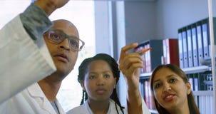 Team die van wetenschapper met elkaar bespreken 4k stock footage
