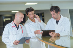 Team doctor making appointment Stock Image