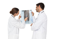 Team of doctors analysing an xray together Royalty Free Stock Image