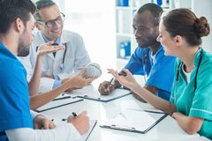 Team of doctors having conversation. Multiethnic team of doctors and general practitioner having conversation and holding plastic brain model Stock Photo