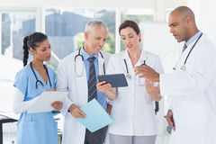 Team of doctors working together on patients file Stock Images
