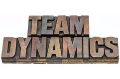 Team dynamics in wood type. Team dynamics - isolated text in vintage letterpress wood type blocks stained by ink Stock Image