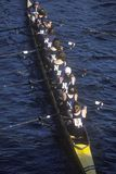 Team of Female Rowers Royalty Free Stock Images