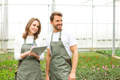 Team of florist working together at the plants nursery Stock Photography