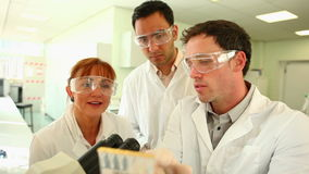 Team of focused scientists at work in the lab stock video footage