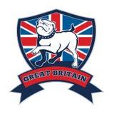 Team GB English bulldog Great Britain mascot Stock Photography