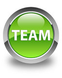 Team glossy green round button Royalty Free Stock Photo
