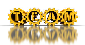 Team. Golden gears with team text, 3d render Royalty Free Stock Photography