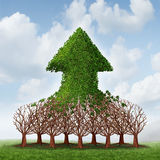 Team Growth. And corporate profit business concept with a group of growing trees joining together to form an upward arrow as teamwork development metaphor for Stock Photos