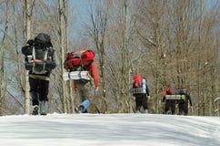 Team gruppen som fotvandrar i skog i vintertid arkivfoto