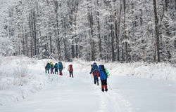 Team of hikers in winter mountains Royalty Free Stock Image