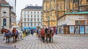 Team of horses and their coach on Stephansplatz in Vienna. Vienna, Austria - January 8, 2014: Team of horses and their coach on St Stephen Cathedral and Stock Photos
