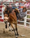 Team l'équitation de Bronc - soeurs de PRCA, le rodéo 2011 de l'Orégon Images stock