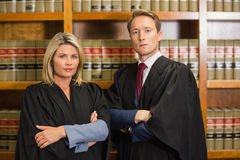Team of lawyers in the law library. At the university Royalty Free Stock Photo